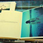 "ARNES - wystawa w Galerii Fotografii ,,Ratusz"""