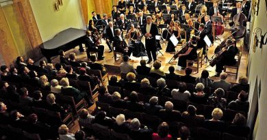 Koncert Mikołajkowy w wykonaniu Orkiestry Symfonicznej im. Karola Namysłowskiego – 05.12.2014 r.
