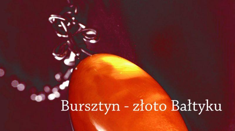"""Wykład """"Bursztyn – złoto Bałtyku"""""""