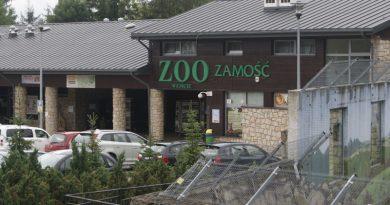 Miasto szuka firmy, która rozbuduje ZOO