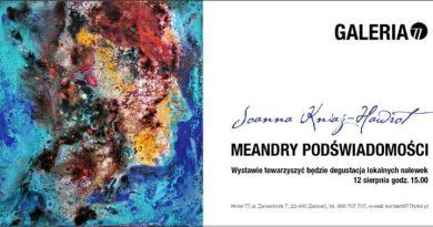 """""""Meandry podświadomości"""" Joanny Kniaź – Hawrot"""