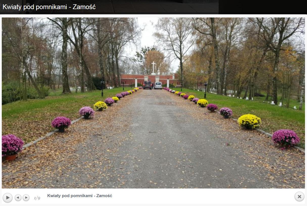 Kwiaty pod pomnikami